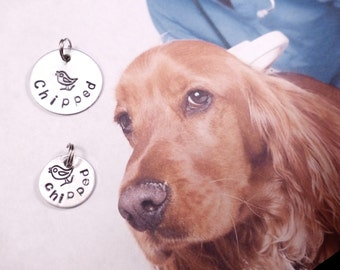 FREE Shipping - 2 Choice Size : Mini or Regular - Chipped Pet Tag for Dog or Cat Collar