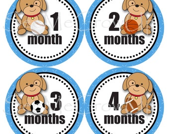 Baby Monthly Stickers, Baby Shower Gift, Puppy Baby Sports Stickers, Milestone Stickers Baby Month Stickers, Boy Stickers
