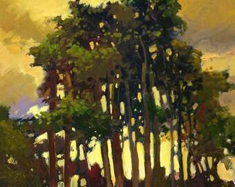 """Tonalist Impressionist Art - Matted Giclee Fine Art Print  """"Golden Evening"""" Sunset 11x14 by Jan Schmuckal"""