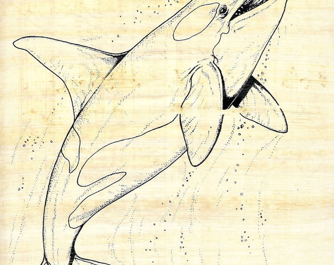 New! Color on Egyptian Papyrus-Killer Whale Design! Use paints, markers, crayons! Unique, creative art activity for kids, camps and more