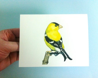 Watercolor Bird Card - Goldfinch