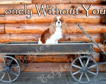 Blenhiem Cavalier King Charles Spaniel Blank Greeting Card.Lonely Without You