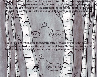 Birch Trees Digital print