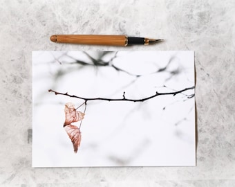 Leaves photo card   photo card   photographic card   nature card   photo print    card for her   card for nature lover   winter   white