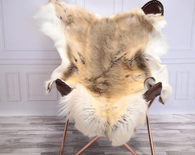 Reindeer Hide | Reindeer Rug | Reindeer Skin | Throw L  Large - Scandinavian Style #20RE11