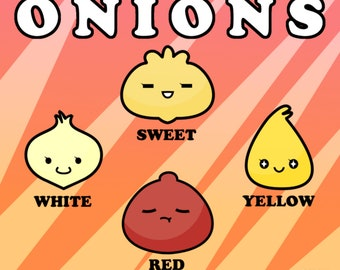 Types of Onions Chibi Anime Vegetable Chart High Quality Art Print