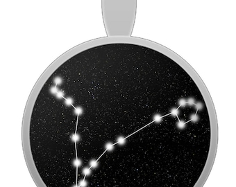 Pisces Constellation Pendant Necklace - Astrological Astrology Zodiac - Made When Ordered In The USA
