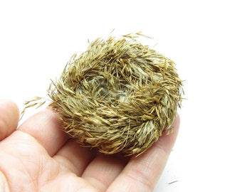 Bird's Nest Decoration Natural Grass Nests for Craft Projects, Floral Arrangements - Small
