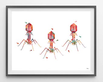 Bacteriophage Watercolor Print bacterial virus poster phage print science art virus structure cytology print biology art bacteria Wall art
