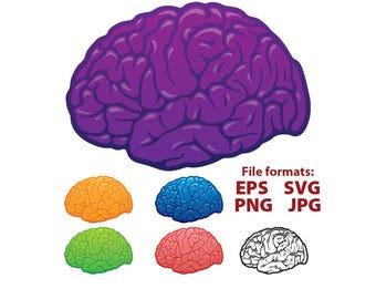 Brain, brain clipart, clipart, red, orange, blue, green, purple, illustration, digital, vector, clip art, SVG, PNG, cutting file, vinyl