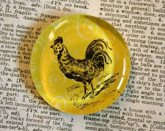 Rooster Magnet - Jumbo Glass Magnet - Chicken Magnet