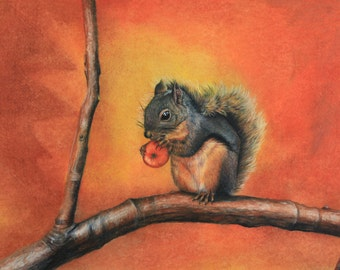 Prismacolor art print of Little Red Squirrel 18x13