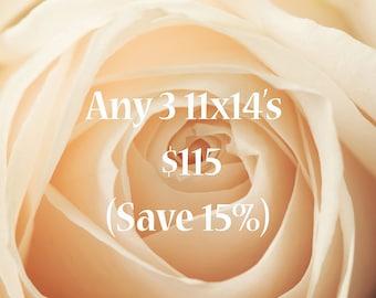 Photography Sale Buy Any 3 11x14's, save 15%, nature,  landscape, street, still life, fine art photography, prints, cards, pillows