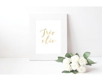 Gold Print, French Script Print, Très Chic, Very Stylish 8 x 10 Gold Foil, Rose Gold 5 x 7 Silver Fashion Print, Pink Romantic Bedroom Art