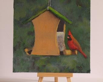 """Bird paintings, cardinal,  small original oil, garden bird art, 6"""" x 6 """"canvas"""