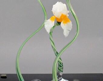 Indian Summer Blown Glass Iris Flower - Lampwork Art Sculpture