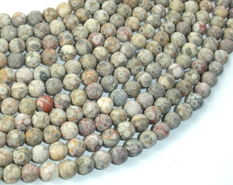 Matte Fossil Jasper Beads, 6mm (6.5mm) Round Beads, 15 Inch, Full strand, Approx 61 beads, Hole 1mm, A quality (220054017)