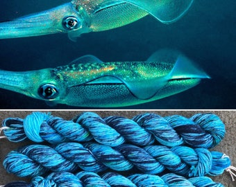 Bigfin Reef Squid 20g Miniskein, blue green speckled merino nylon sock yarn