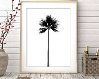 Palm Tree Print, Summer Print, Black And White Palm, Palm Leaves Print, Palm  Tree Wall Art, Palm Tree Art, Printable Home Decor, Summer Art