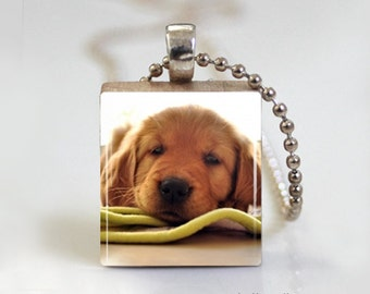 Golden Retriever Dog Puppy - Scrabble Tile Pendant - Free Ball Chain Necklace or Key Ring