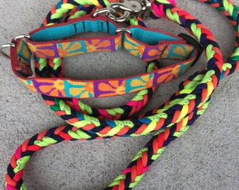Lupine Martingale Dog Collar with Matching Paracord Leash