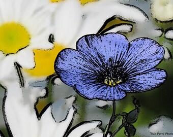 Surreal Flower Photography, Dream Flower Prints, Romantic Decor, Wild Gerraniums, Blue, Bedroom Decor, Shabby Chic, Cottage Chic