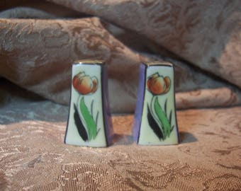 Vintage Salt And Pepper Shaker Set with Flowers.