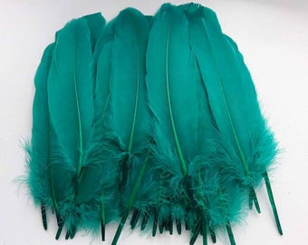 set of 5 feathers Blue Green 15-20cm