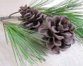Pinecone Silicone Mold By Sugar Delites MOL214