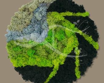 Moss / Lichens Wall Art