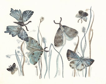 """Moths Watercolor- watercolor painting reproduction- Moths No. 2   grey, blue, taupe 8 1/2 x 11"""" print"""