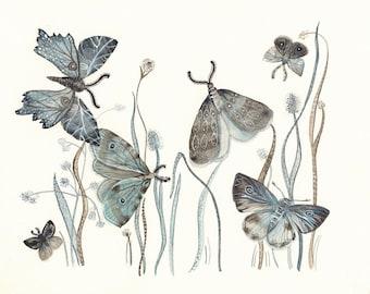 Moths No. 2        large print