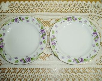 Two Noritake Nancy Salad Plates