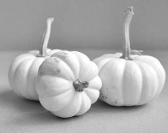 Dining room wall art, black and white food photography, grey and white kitchen picture, pumpkins photo, shabby chic kitchen wall art print