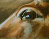Horse Look XII Original O...