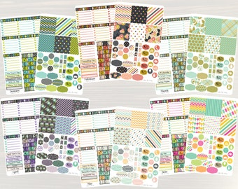 6 Month Bundle - Horizontal Monthly Color Stickers, Planner Stickers, Sticker Set, Monthly Planner, for use with ERIN CONDREN LifePlanner