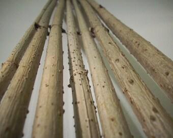Elder Twigs,Elder Wand,Elder Branch,Straight Long Elder Stick,Craft Supply,Home Decor,Set of  5