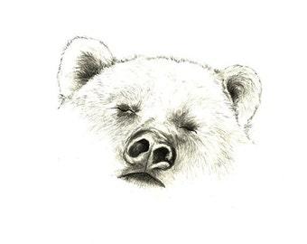 Bear Drawing-Bear Art-Bear Decor -Print of Original Bear Drawing  - Sleepy Bear - Kids Decor