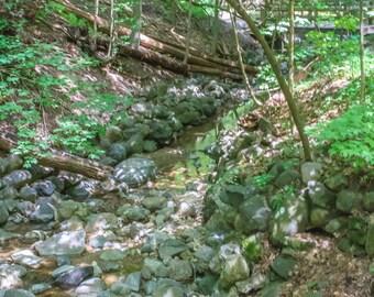 Scenic brook Print