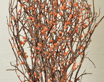 Berry Bittersweet Sweet Huck | Dried Branches | Natural Decor