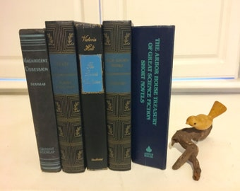 Black Blue Book Stack, Old Books, Instant Library, Set of 5