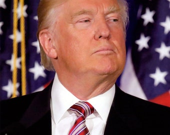 Donald Trump 2016 President of the United States 8x10 Photo #03