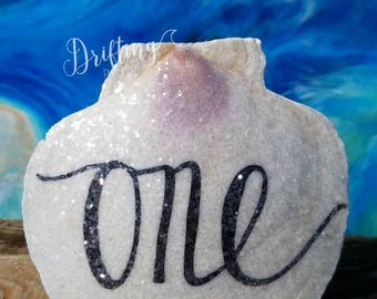 Handwritten Natural Scallop Shell Table Numbers, Beach Wedding Table Decor & Signs, Beach Table Number Alternatives