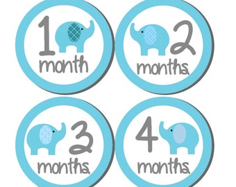 12 month stickers- Monthly Stickers- Milestone Sticker- Baby Month Stickers- Baby Boy Month Stickers- Milestone Baby Month Stickers- B09