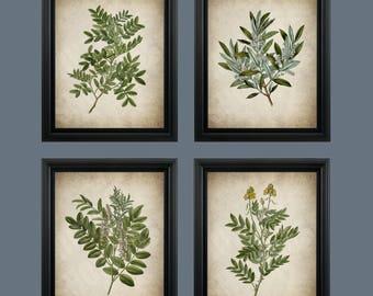 Vintage Green Leaves Print - Botanical Wall Art Plant Decor - Green Plant Leaf Prints- #COL-P-002