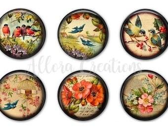 Vintage Birds and Flowers, Fridge Magnets, Magnet Set, M014