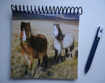 Welsh Mountain Ponies Notebook