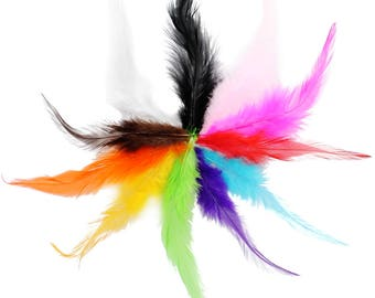 Pointy Hackle Feathers