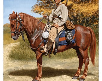 Confederate Mounted Infantry