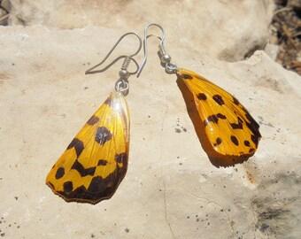 Earrings handcrafted butterfly wings.